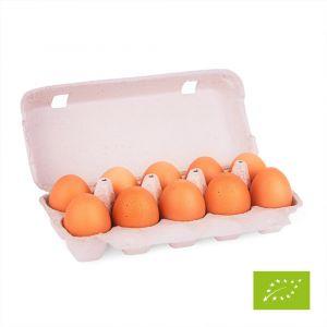 10 biologische eieren